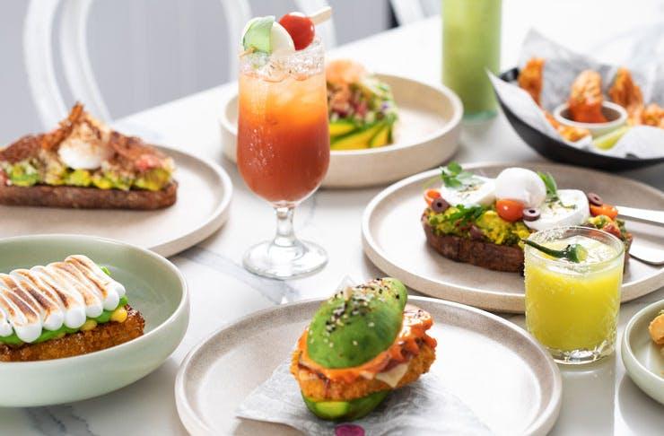 Various avocado dishes