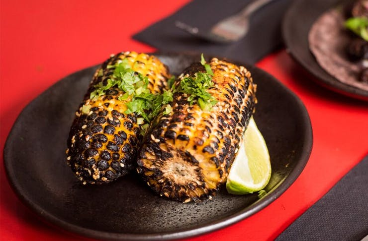 best-vegan-mexican-food-sydney