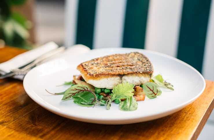 A cooked barramundi served with sides on a white plate.