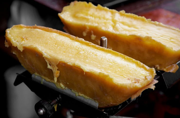 Two half-wheels of raclette cheese being melted.