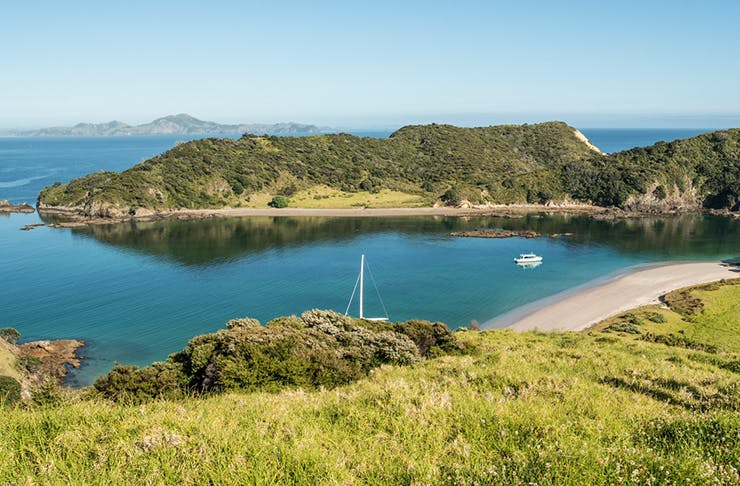 Day Trips From Auckland When You Don't Have A Car