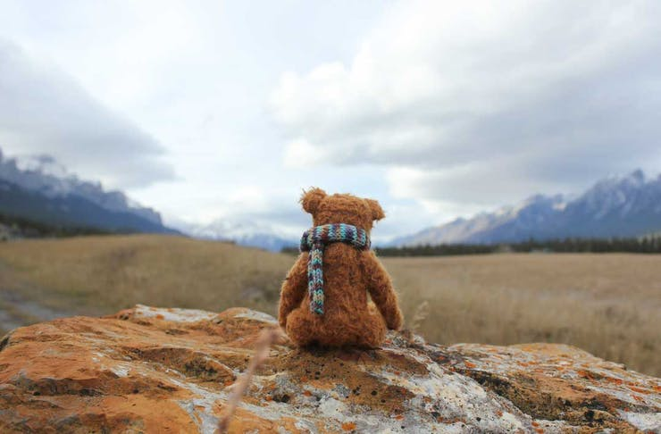 bear-hunt-covid-19