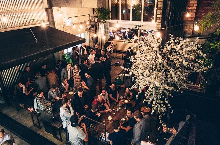 Cheers! Auckland's Best Bars For After Work Drinks