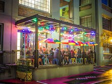 Make Your Way To These Awesome Wellington Bars