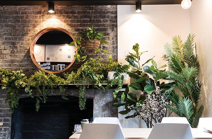 best-cafes-brisbane