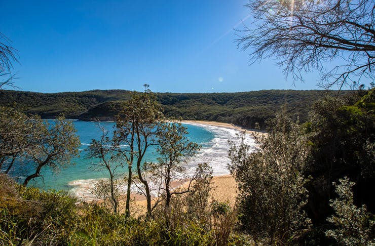 The crescent shape of Maitland Bay Beach in Bouddi National Park near Sydney.