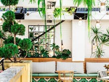 The Best Spots For A Long Lunch In Sydney | The 2018 Edit