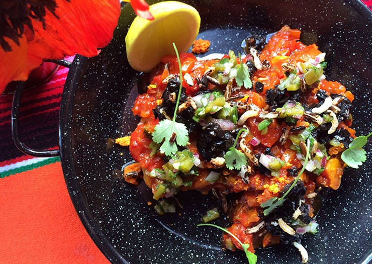 The Best Mexican Food In Auckland