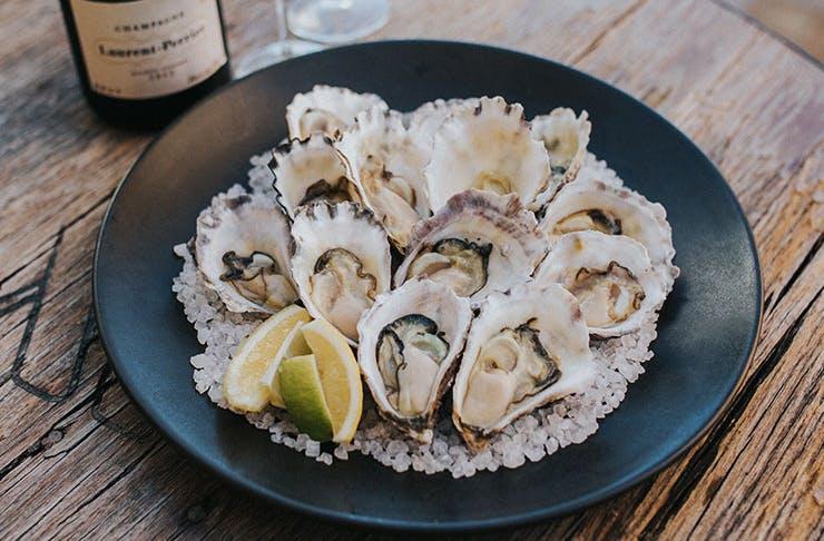 Best oysters brisbane