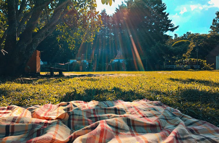 A picnic rug set out in a sunny park.