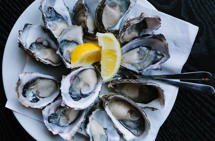 best-seafood-brisbane