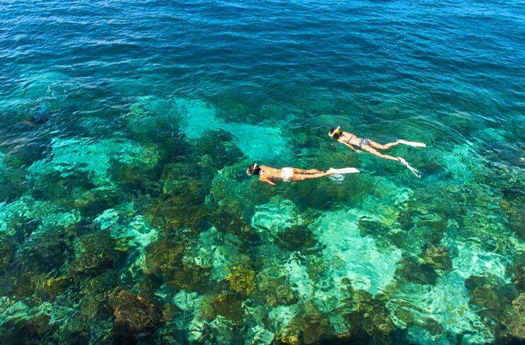 Best snorkelling sydney