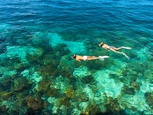 Grab Your Flippers And Dive Into 7 Of The Sunshine Coast's Best Snorkelling Spots