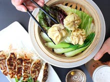 Best Spots For Dumplings And Beer In Auckland