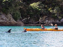 Float Your Boat With The 6 Best Kayaking Spots Around Auckland