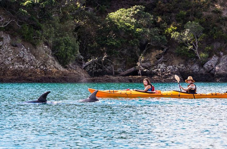 kayaking auckland, where to kayak auckland, kayak hire auckland, kayak lessons auckland