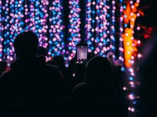 The Best Streets To See Christmas Lights In Melbourne