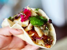 Where to Head For Taco Tuesday In Auckland