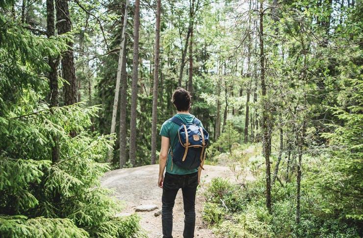 best walks hills districts sydney