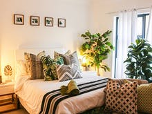 5 Of The Best Air Purifying Plants To Green Up Your Bedroom With