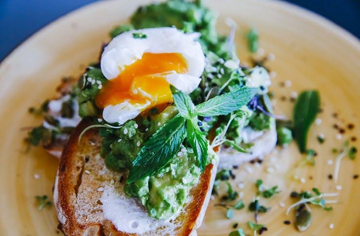 best avocado toast brisbane best cafes brisbane