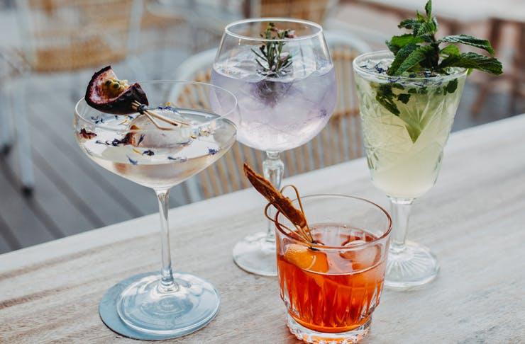Cocktails noosa