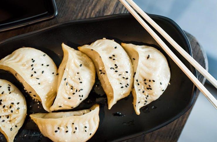 Best Dumplings Sunshine Coast