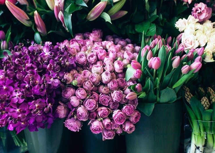 5 Of The Sunshine Coast's Best Florists