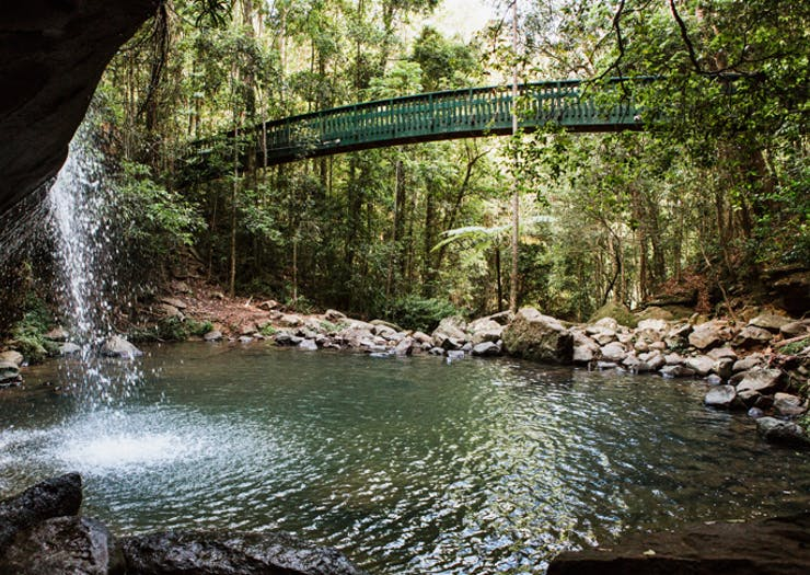 The Best Picnic Spots On The Sunshine Coast