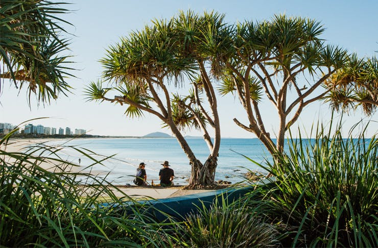 A couple sit under a pandanus tree overlooking the ocean at Alexandra Headland on the Sunshine Coast.