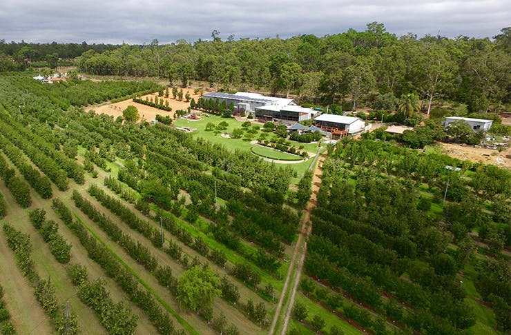 The Best Wineries And Cideries In The Perth Hills