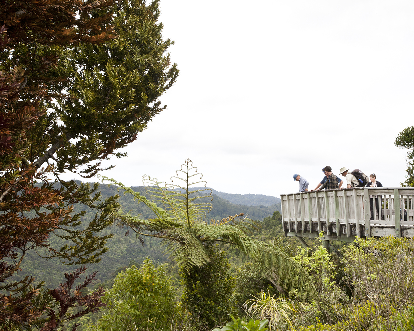People take photos from a lookout spot.
