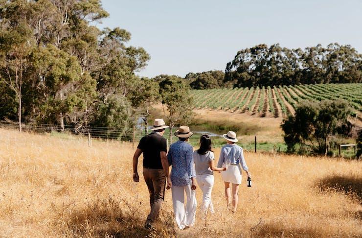 Four people walking in a field holding bottles of wine