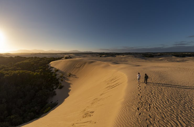 Two people walking along the ridge of a sand dune during a sunny afternoon.
