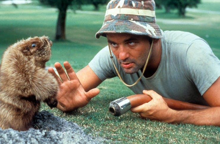 bill-murray-australia
