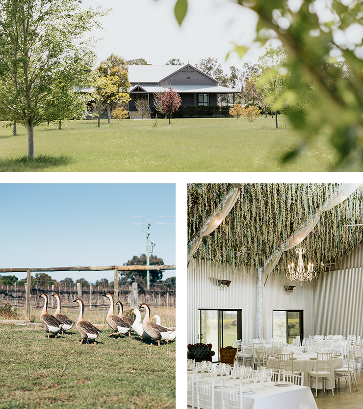 The best wedding venues in nsw sydney the urban list actively looking for a venue you better hop to it cause well marry any tom dick or harry just to get a taste of this one solutioingenieria Gallery