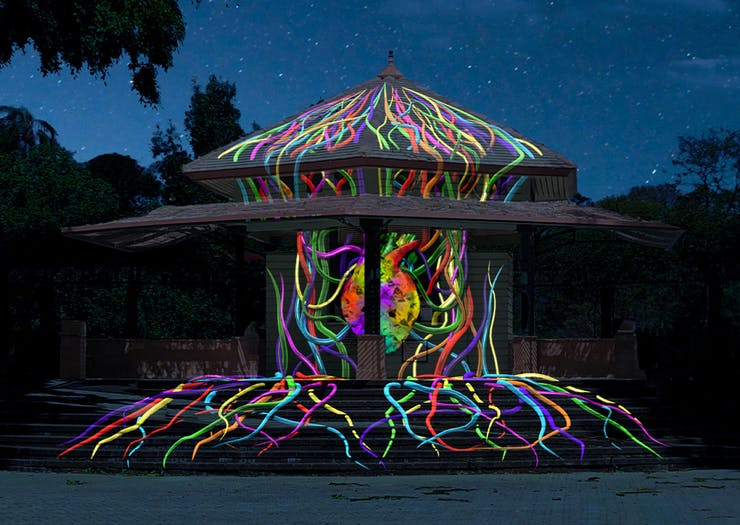 Stay Up After Dark, Botanica's Dazzling Art Installations Are Taking Over The Botanic Gardens
