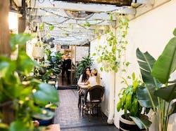 botanical-lane-perth