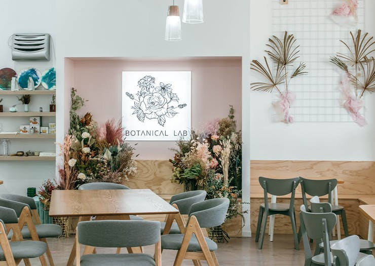 interior of botanical lab
