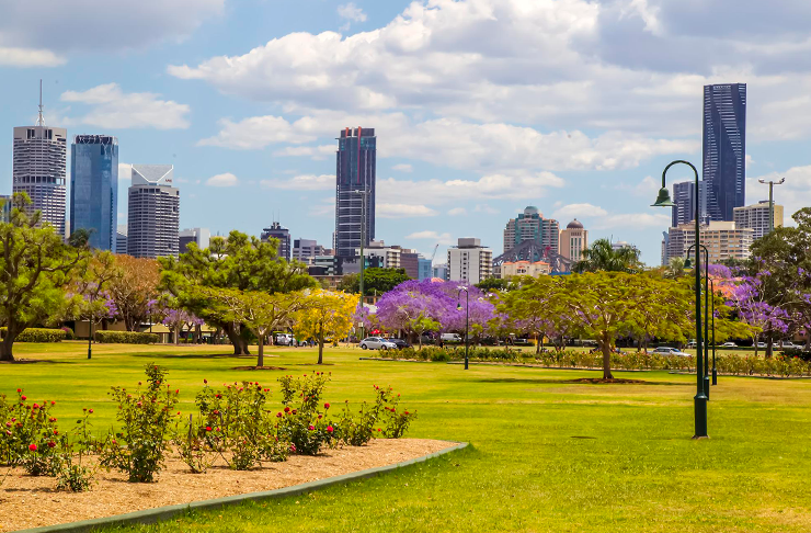 New Farm Park on a sunny day. Brisbane city is in the background.