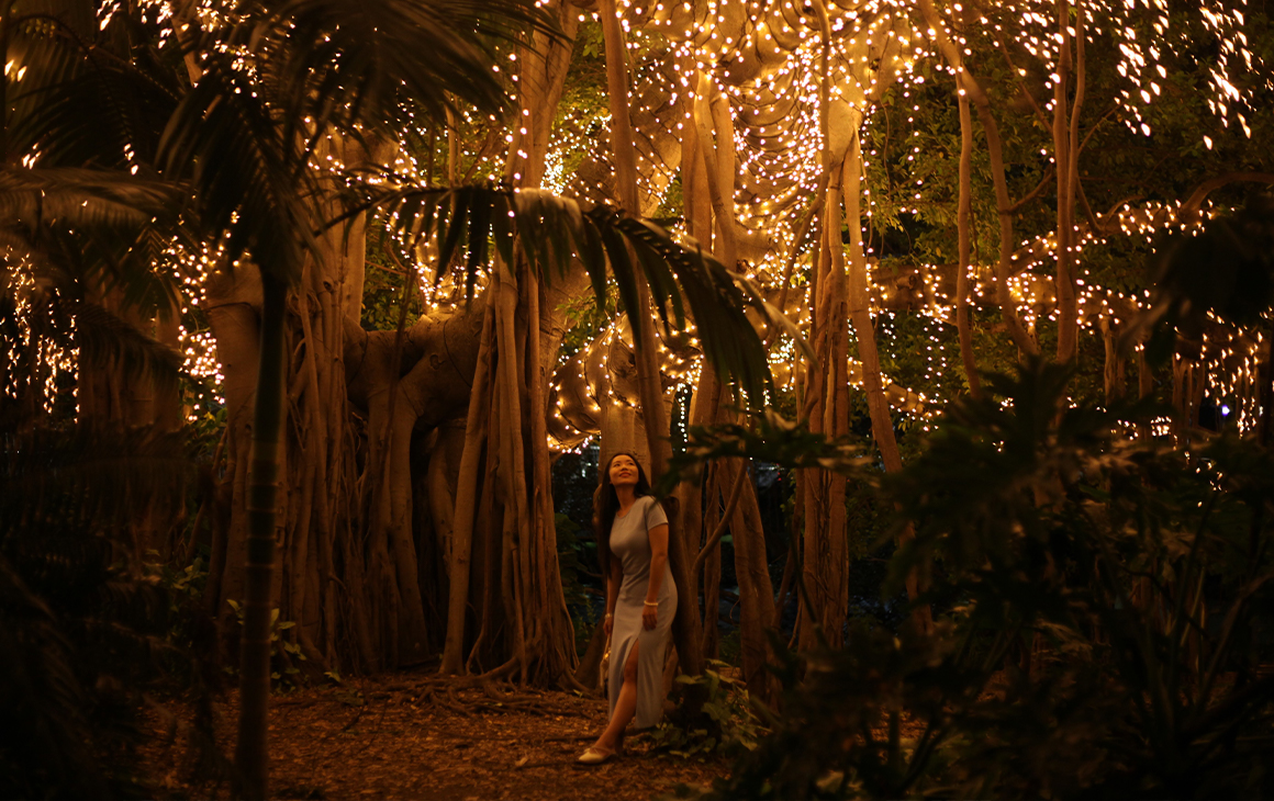 A woman standing under a fairy lit fig tree at night.