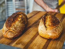 Where To Buy Brisbane's Best Bread