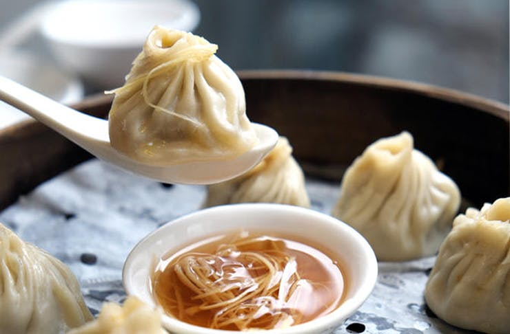 brisbanes best dumplings