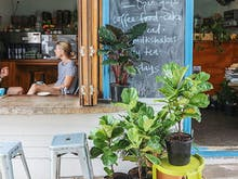 This Brisbane Cafe Fave Is Now Selling Indoor Plants!