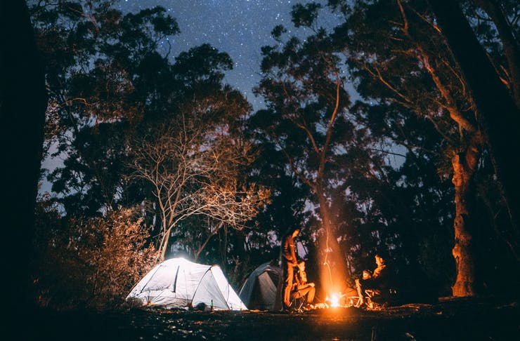 People gather around a bonfire at a campsite under towering trees.
