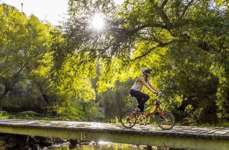 sunshine-coast-bike-ride