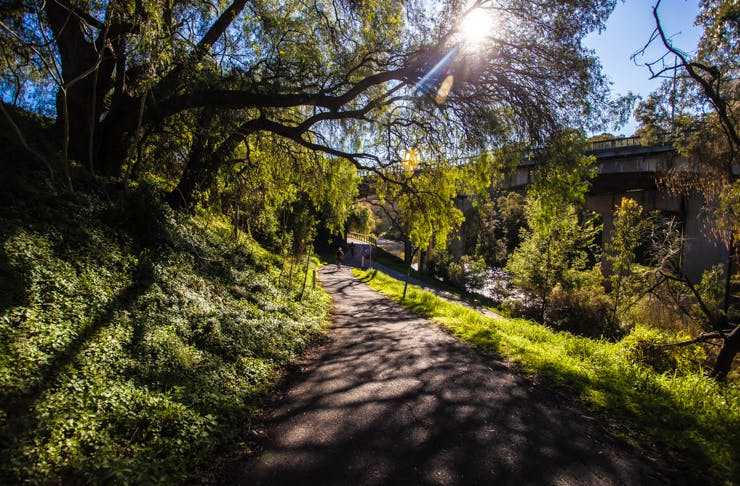 Melbourne's Best Walks