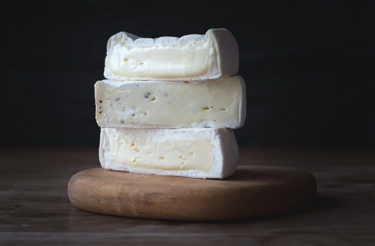 cheese festival sydney