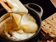 Loosen Your Belt For The Sunshine Coast's Ultimate Cheese Degustation Event