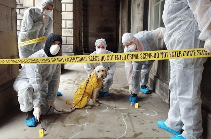 Murder Mystery perth